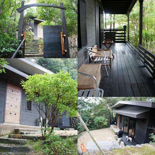 りすの庭.jpg